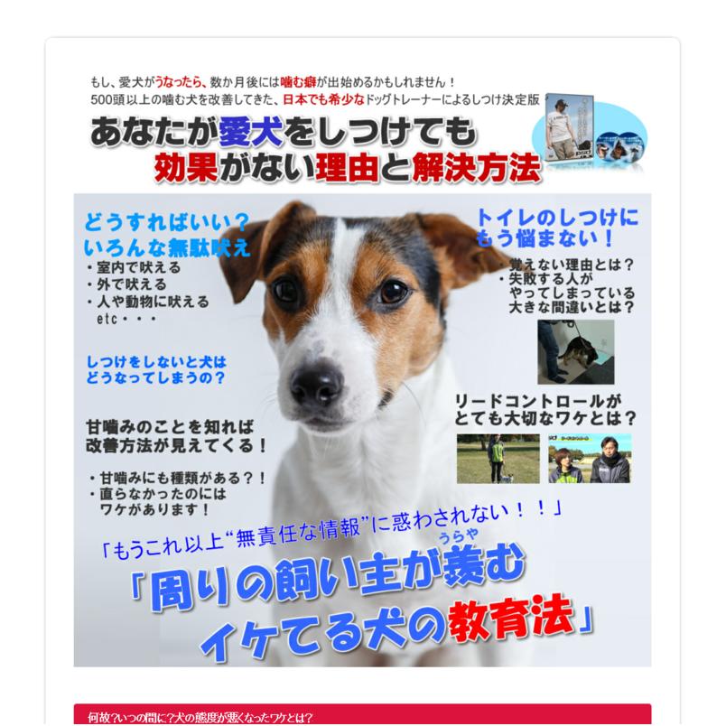 【愛犬しつけ講座2】「周りの飼い主が羨むイケてる犬の教育法」