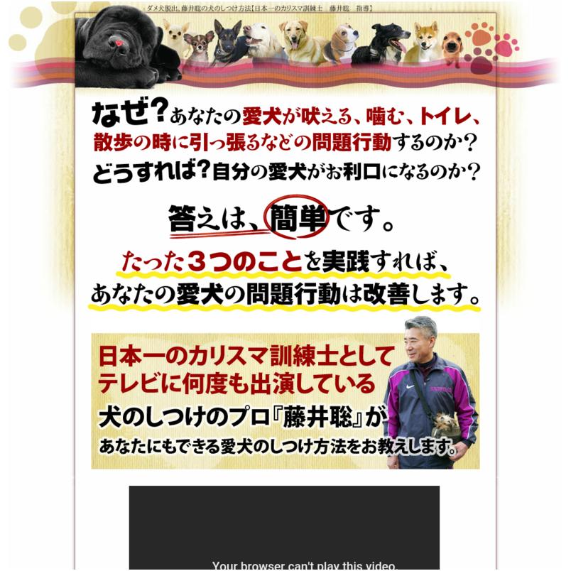 ダメ犬脱出、藤井聡の犬のしつけ方法【日本一のカリスマ訓練士 藤井聡 指導】